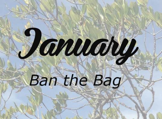 Jan 2016 Ban the Bag