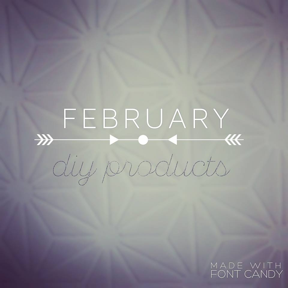 February DIY Products